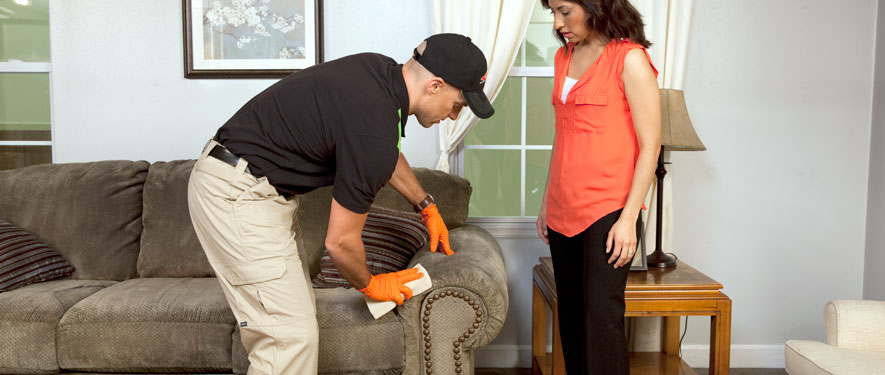 Norfolk, VA carpet upholstery cleaning